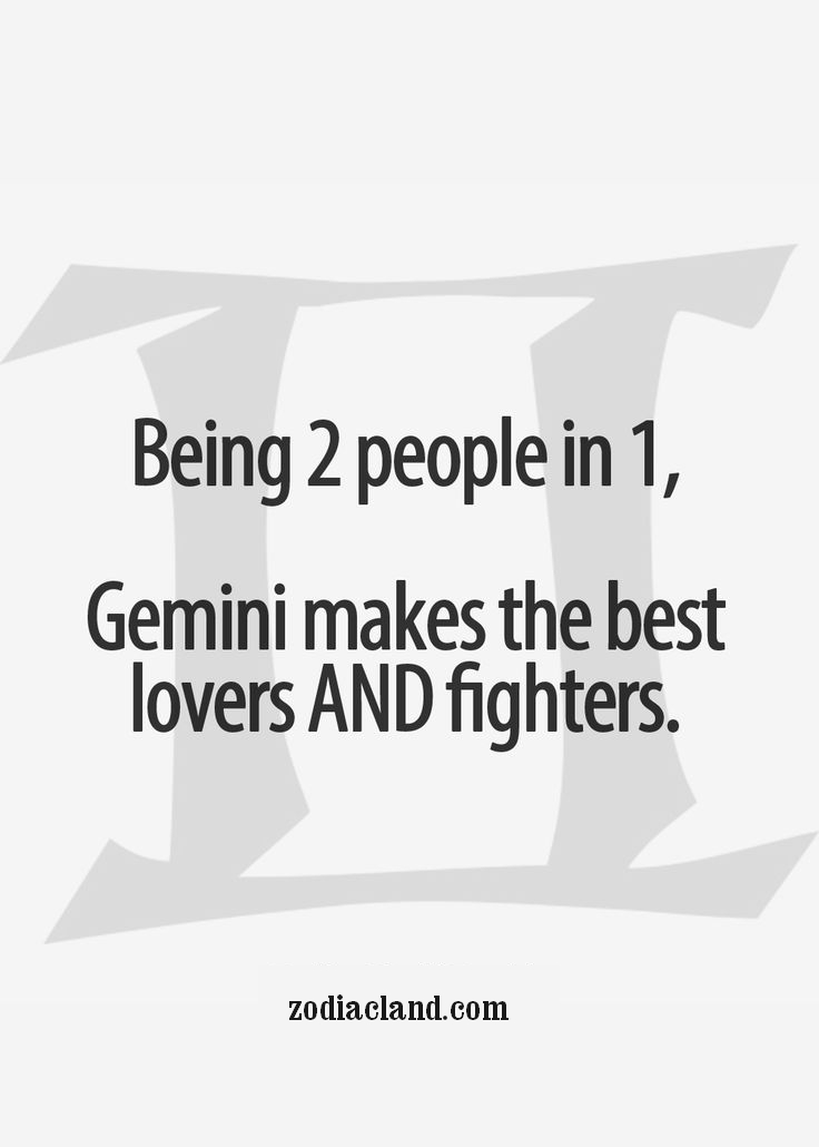 Gemini is a Lover and a Fighter - Zodiac Land - the Best